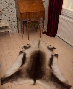 Nordic Reindeer Hide XL approx