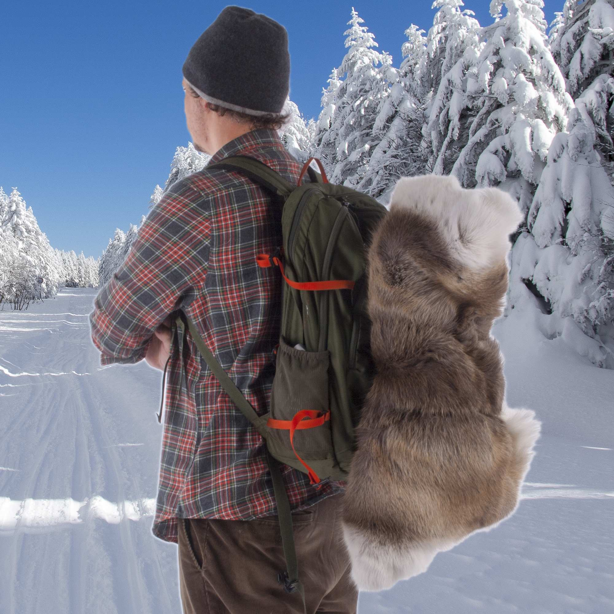 Rugs UK - Reindeer Hides from The Real Rug Company